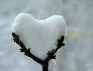 snowy heart on twigs
